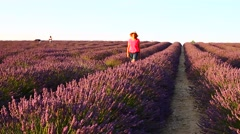 Woman in pink dress walking in lavender field Stock Footage