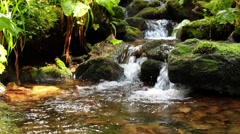 Mountain stream with waterfall Stock Footage