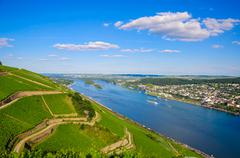 Vineyards and ruins near Rhine river, Bingen am Rhein, Rheinland Stock Photos