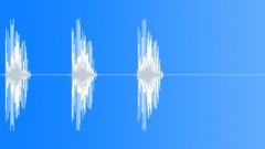 Bird, Tern 270 Sound Effect