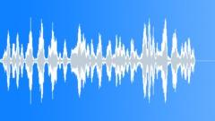 Bird, Tern 78 Sound Effect