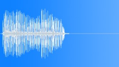 Bird, Tern 24 Sound Effect