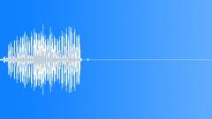 Bird, Tern 23 Sound Effect