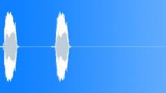 Bird, Tern 305 Sound Effect