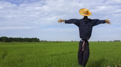 Straw puppet protect rice field Stock Photos