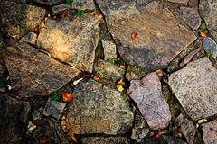 Old pavement surface - stock photo
