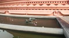 Flower offering basin around the Erwan Museum building, water flow run Stock Footage