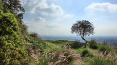 Hyperlapse POV walk trail Hollywood Hills scenic view Los Angeles 4K timelapse - stock footage