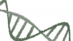 4k double helix dna strand forming then rotating Stock Footage