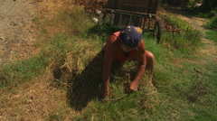 Grass-cutting with sickle. Stock Footage
