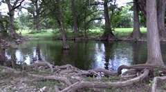 Clear stream with open water slowing going by Stock Footage