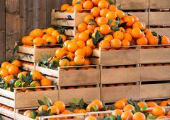 Wooden crates of fresh ripe oranges - stock photo
