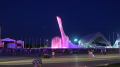 The main Olympic torch, Night. Sochi, Russia. 4K Stock Footage