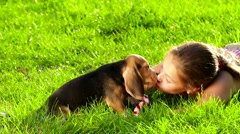 Beagle puppy dog eating from hand in woman's arms. Slow motion Stock Footage