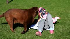 Little girl and her mom playing with a Brown Labrador retriever in spring Stock Footage