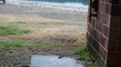 Leaky waterpipes on brick wall Stock Footage
