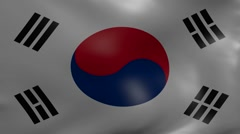 South korea strong wind flag Stock Footage