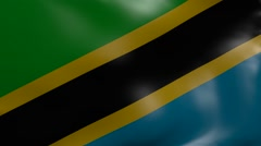Tanzania strong wind flag Stock Footage