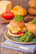 Vegan bran burger Stock Photos