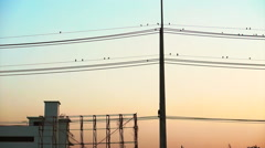 Vertical electric pole and flock of birds on wires with colourful sky sunset - stock footage