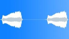 Bird,Caspian gull 6 Sound Effect