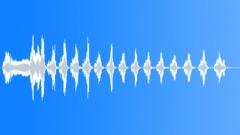 Bird,Caspian gull 3 Sound Effect