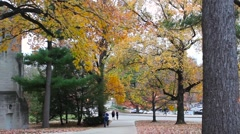 Indiana University Fall Long Sidewalks Stock Footage