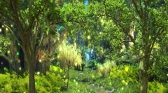 Magical Forest - stock footage