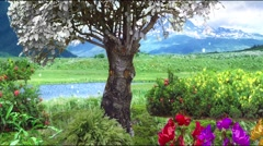 Magical Forest animation - stock footage