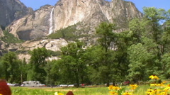 Half Dome over Carpet of Yellow Flowers In Yosemite National Park -Pan Right- Stock Footage