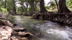Clear river or stream flowing fast down river Stock Footage