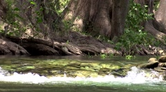 Very clear water flowing over rocks in stream or river Stock Footage