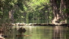 Calm lake or stream in afternoon light Stock Footage