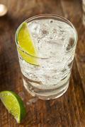 Alcoholic Gin and Tonic - stock photo