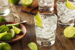 Stock Photo of Alcoholic Gin and Tonic