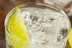 Alcoholic Gin and Tonic - stock photo