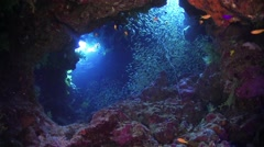 Sunlight Illuminates a Underwater Cave Stock Footage