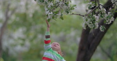 Child Trying to Get Branch of Blooming Tree Stock Footage