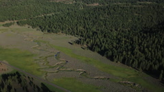 AERIAL OF GREEN WASHINGTON FOREST AND WINDING RIVER Stock Footage