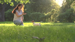 Young girl in Park with a very cute puppy Jack Russell Terrier fun playing Stock Footage