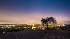 Lone tree Los Angeles Hollywood Hills night city skyline cityscape. 4K timelapse - stock footage