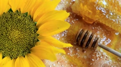 Fresh honey with wooden dipper, honeycomb, sunflower and pita bread Stock Footage