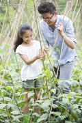 Young father and daughter gardening together Stock Photos