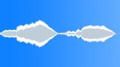 Bird,guillemot 16 Sound Effect
