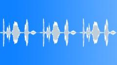Goldfinch 30 Sound Effect