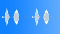Goldfinch 69 Sound Effect