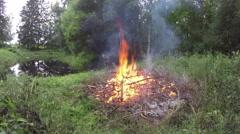 Fire burning on summer pond shore, timelapse 4K Stock Footage