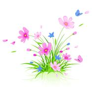 floral background with cosmos flowers - stock illustration