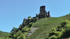 Metternich Castle in Beilstein, Germany surrounded by vineyards Stock Footage