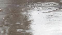 Rain Drops on Sidewalk Stock Footage